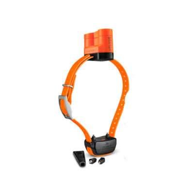Garmin Delta Upland XC Dog Device|www.gundogoutfitters.com