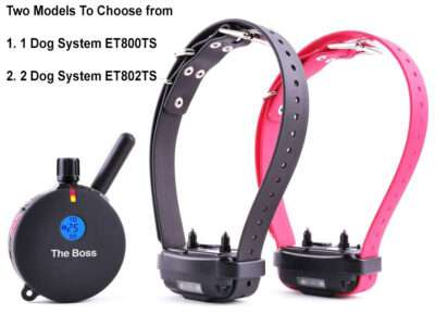 E Collar Technology Boss Training Collar