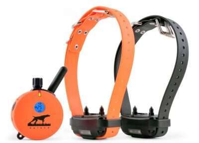 E Collar Technology Upland 2 Dog Remote Trainer