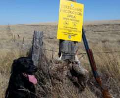 Great day on the prairie!