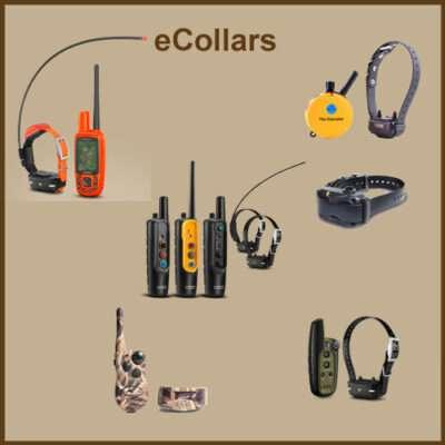 E-Collars