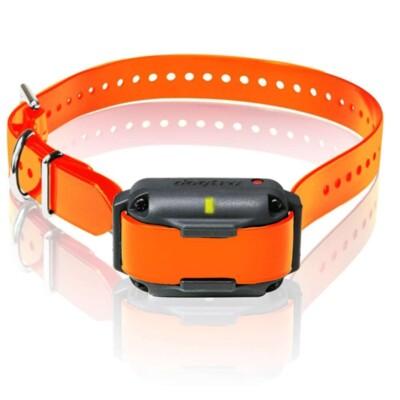Dogtra 2300NCP Extra Collar | gun dog outfitter | gundogoutfitter.com