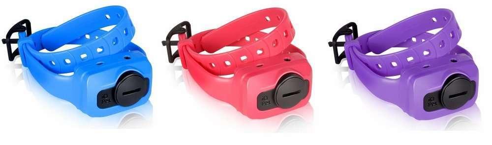 Dogtra IQ Cliq Exrta Receiver Blu | gun dog outfitter | gundogoutfitter.com