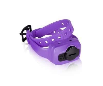 Dogtra IQ Cliq Exrta Receiver Purp | gun dog outfitter | gundogoutfitter.com