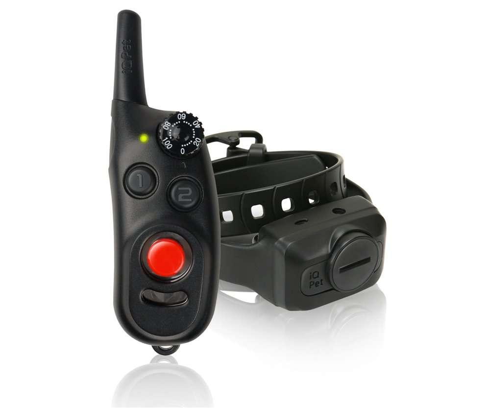 Dogtra IQ CliQ Training Collar | gun dog outfitter | gundogoutfitter.com