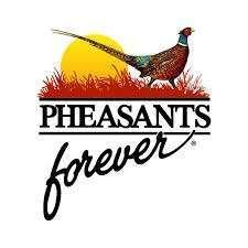 Pheasants Forever | gun dog outfitter |gundogoutfitter.com
