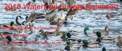 2018 Duck Numbers Released | gun dog outfitter | gundogoutfitter.com