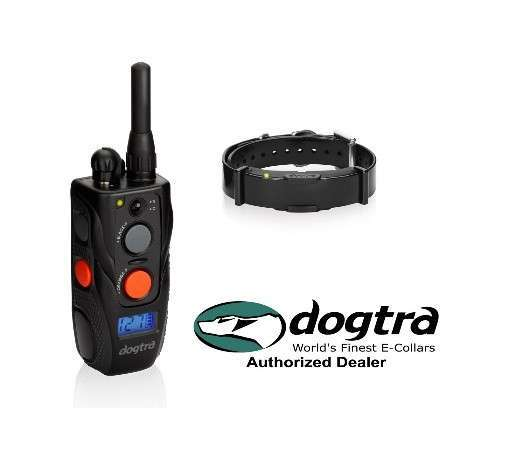 Try the DOGTRA ARC Series for Maximum Comfort
