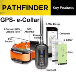 Take a look at the Dogtra Pathfinder GPS + e-Collar Features